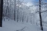 Snežnik 15