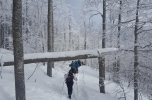 Snežnik 18