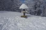 Snežnik 19