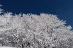 Snežnik 51 5