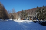 Snežnik 51