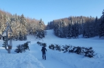 Snežnik 53